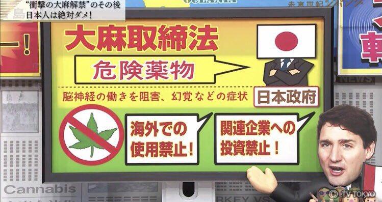 カナダ合法化の際の日本の報道内容。